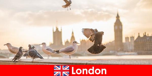 ロンドンの海外からの訪問者のための観光スポット