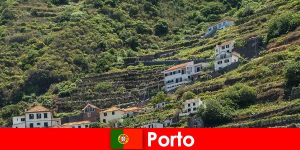 世界中からワイン愛好家のためのポルトの休日の目的地