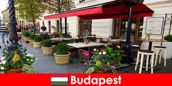 ブダペストハンガリーの短い休憩先は、高級レストランの味を持つ訪問者のための