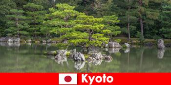 日本庭園は京都でリラックス散歩のために見知らぬ人を招待します