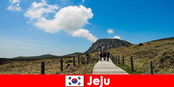 観光客は済州韓国の素晴らしい自然の風景をハイキング