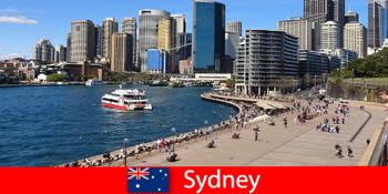シドニーオーストラリア市全体のパノラマビューで、世界中からの訪問者を楽しめます。