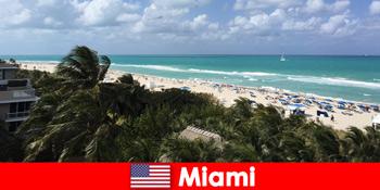 パーム砂浜の波は、パラディシアカルマイアミ米国で長期の休暇を待っています