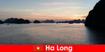 海外からのストレスの観光客のためのハロンベトナムでの完璧な休日