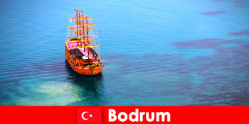 美しいボドルムトルコの友人とのメンバーのためのクラブ旅行