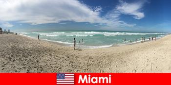 エキサイティングなヒップとユニークな感じの若い旅行者暖かいマイアミアメリカ合衆国